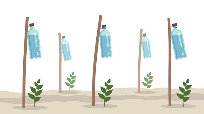 D.I.Y. Drip Irrigation Systems